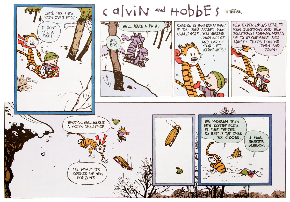 calvin and hobbs philosophy