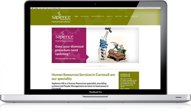 Sapience HR website design